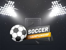 Night view of a soccer ground with flud lights, goal net and soc Royalty Free Stock Image