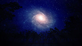 Night view of a spiral galaxy. A night view of a spiral galaxy vector illustration