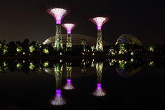 Night scene of super trees and flower dome at lake. Night view of super trees and flower dome and cloud forest at lakeside in singapore Stock Image