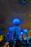 Night view of Supertree Grove at Gardens by the Bay on June 18, Stock Photo