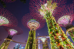 Night view of The Supertree Grove at Gardens near Marina Bay, Singapore Stock Image