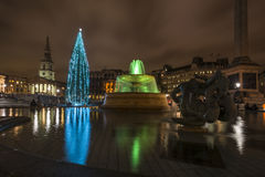 Night view of Trafalgar Square with christmas tree Stock Photography