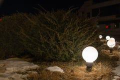 Night View Of Winter Flowerbed Illuminated By Round Lanterns. Stock Image