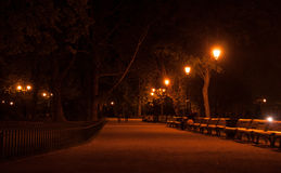 Night walk in a park Stock Images
