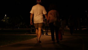 Night Walk in the Park. Teenagers and grown ups pass the alleys of the park, in nighttime. Some looking for a brisk walk, others just in their way to stock video