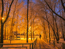 Night walkway  winter town. Horizontal photo, photo took in Russian, photo is usable on picture post card, calendar Royalty Free Stock Photo