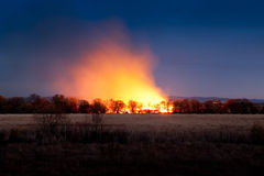 Night wildfire Royalty Free Stock Images