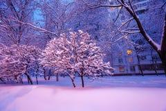 Night Winter City Scene Stock Image