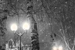 Night cityscape in black and white. The light of the lanterns near the trees during snowfall Stock Photos