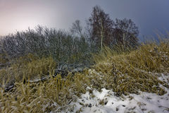 Night in winter field Royalty Free Stock Photography