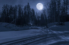Night, winter forest in the moonlight. Snowmobile, forest path in the night under the moonlight royalty free stock images