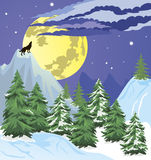 Night winter forest scene Royalty Free Stock Images