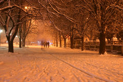 Night winter landscape Stock Photos
