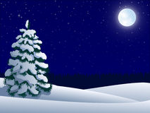 Night winter landscape. With lonely tree and  moon Royalty Free Stock Photography