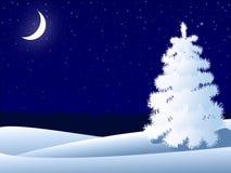 Free Night Winter Landscape Stock Photo - 17523810