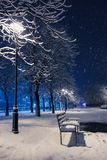 Night winter landscape in the alley with bench of city park Royalty Free Stock Image