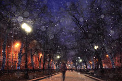 Night winter landscape. In the alley of city park Royalty Free Stock Photography
