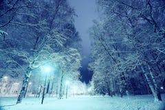 Night winter landscape Royalty Free Stock Photography