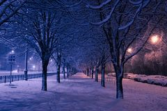 Night winter landscape in the alley of city park. Night winter landscape in the alley with lantern of city park Stock Photography