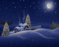 Night winter landscape  in blue . Royalty Free Stock Photo