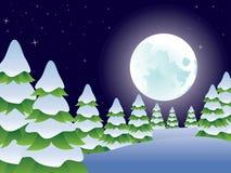 Night Winter Landscape Stock Photography