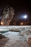 Night of the winter landscape. The trees are beautifully covered in snow Royalty Free Stock Images
