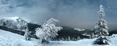 Night winter mountain landscape in full moon moonlight Stock Photography