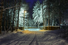 Night. Winter. Street in a suburban village near Moscow. Winter. A solitary lamp lights snow street holiday village, covered with snow trees and fence stock images