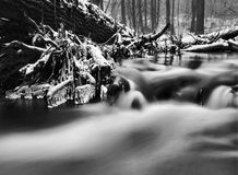 Night winter view to frozen brook, icy twigs and icy boulders above rapid stream. Reflections of light in icicles. Black and white Royalty Free Stock Photography