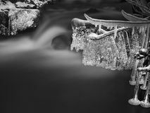Night winter view to icicles on twigs and icy boulders above rapid stream. Reflections of head lamp in icicles. Black and white. Stock Images