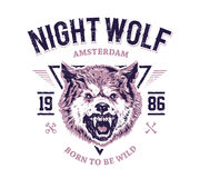 Night Wolf Stock Photography