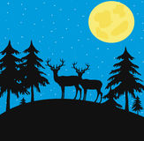 Night wood with wild deer Stock Photography
