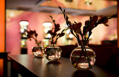 Nightclub interior - flower decoration. Royalty Free Stock Photography