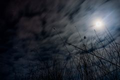 Nightfall. Cloudy nightfall over a lake, covered by stars and moonlight Royalty Free Stock Photo