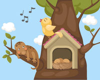 Nightingale bird on bird house Stock Photo