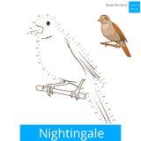 Nightingale bird learn to draw vector Stock Image