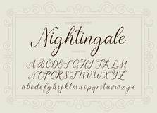 nightingale Handdrawn καλλιγραφική διανυσματική πηγή Στοκ φωτογραφίες με δικαίωμα ελεύθερης χρήσης