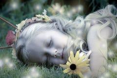 Nightlights do Fairy de sono foto de stock royalty free