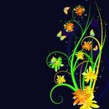 Nightly bloemenachtergrond Royalty-vrije Stock Afbeeldingen