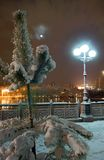Nightly city in winter Stock Images