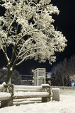Nightly city in winter Royalty Free Stock Image