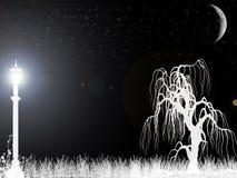 Nightly conflagrant lantaarn stock illustratie