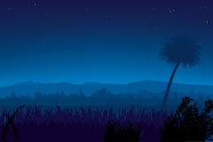 Nightly landscape (vector). Field with city and mountains stock illustration