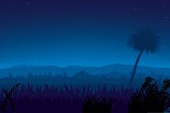 Nightly landschap (vector) stock illustratie
