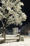 Nightly stad in de winter Royalty-vrije Stock Afbeelding