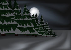 Nightly winter forest Stock Image