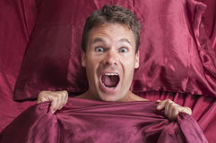 Nightmare in bed. Closeup of terrified Caucasian man reacting to nightmare and screaming under red bed sheets Stock Image