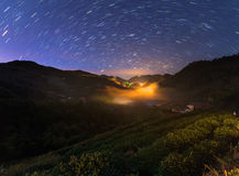 Nightscape alle piantagioni di tè sulla montagna del angkhang Fotografia Stock Libera da Diritti