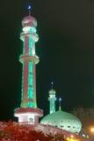 Nightscape da mesquita Foto de Stock Royalty Free