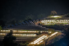 Nightscape of Greenhouse Plant .Doi Inthanon Stock Photography